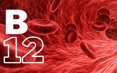B12: een vitale vitamine