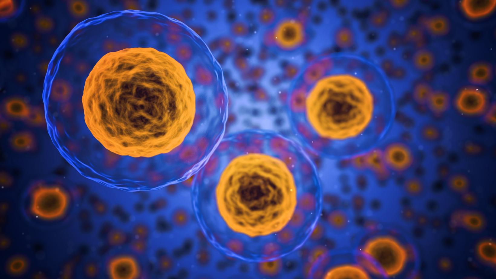 cellen, computer image